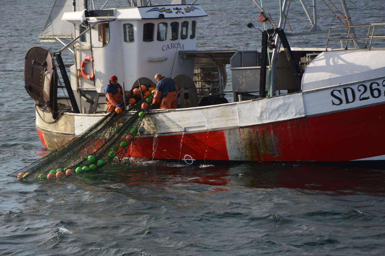 Trawling in the Koster Sea - Sustainable fishing